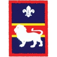 Lion Patrol Badge