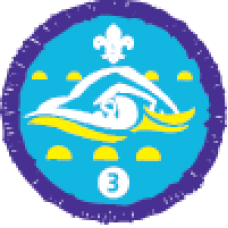 Swimmer Stage 3